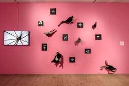 Video,sculpture and drawing installation